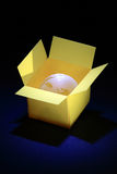 World in box Stock Photography
