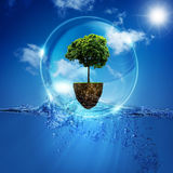 World into the bubble. Stock Image