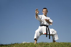 World champion of karate - kata Royalty Free Stock Image