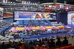 World championship on fight Royalty Free Stock Photo