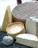 World of Cheese Stock Photography