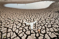 World crisis climate change Stock Images