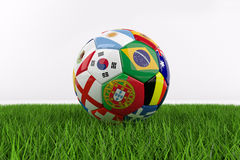 World Cup football on Grass Royalty Free Stock Images