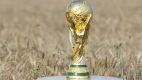 World cup trophy. Rotating against a golden wheat field stock video footage