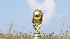 World cup trophy. Rotating against a golden wheat field stock video