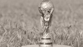 World cup trophy. Photographed above a wheat field stock video footage