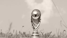 World cup trophy. Photographed in a wheat field stock footage