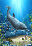 The World Of The Dolphin. A proud dolphin swims in the ocean! A wounderful underwater scene, with fishes, a turtle and more Royalty Free Stock Image