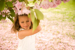World Dreamer. Cute little girl dreaming under cherry blossoms Stock Photography