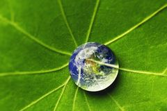 The world in a drop of water. On a leaf. Elements of this image furnished by NASA Royalty Free Stock Photo