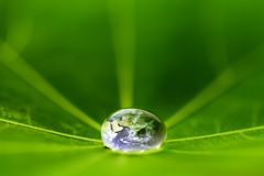 The world in a drop of water. On a leaf. Elements of this image furnished by NASA stock photography