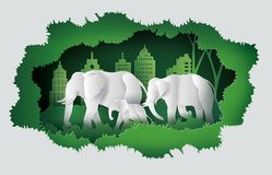 World elephant Day Stock Photos