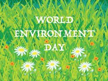 World Environment - background of grass. And flowers Royalty Free Stock Photos