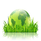 World environment day concept. Earth globe in green grass vector Stock Image