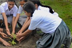 World Environment Day Stock Image
