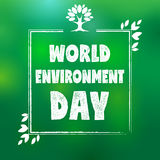 World environment day frame tree and leaf Royalty Free Stock Photos