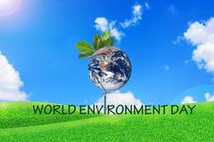 World Environment day,Global credit NASA