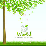 World environment day, tree and flower nature Royalty Free Stock Photo