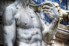 World famous Michelangelo's David chest Stock Images