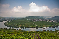 World famous sinuosity at the river Mosel near Trittenheim Royalty Free Stock Image