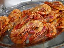 World famous spanish Red prawn of Denia cooked Stock Images