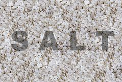 World famous spice salt, a mineral monochrome pattern with an inscription salt. Background stock images