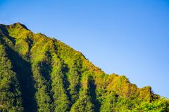 World famous stairs to heaven. Or haiku stairs climb from the bottom with even people hiking down the stairs Stock Photography