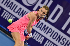 World female Tennis player Aginieszka Radwanska Royalty Free Stock Image