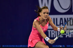 World female Tennis player Aginieszka Radwanska Stock Images