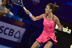 World female Tennis player Aginieszka Radwanska Stock Image
