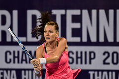 World female Tennis player Aginieszka Radwanska Stock Photography
