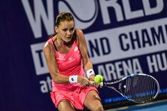 World female Tennis player Aginieszka Radwanska Stock Photos