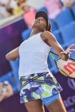 World female Tennis Player Venus Williams Royalty Free Stock Photography