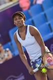 World female Tennis Player Venus Williams Stock Images