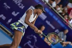 World female Tennis Player Venus Williams Royalty Free Stock Photo