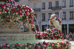 The World Festival of Roses in Lyon Royalty Free Stock Images