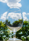 World in a glass. The natural world reflected in a wine glass as if the whole environment were contained and preserved in this chalice Royalty Free Stock Photo