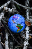 World globe in the forest Stock Photos