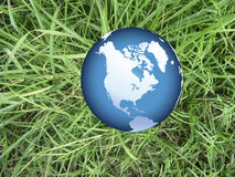 World globe on grass Royalty Free Stock Photo
