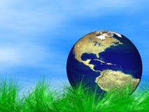 World globe in grass. World globe in green grass Royalty Free Stock Photography