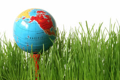 World of Golf. Green grass on white with golf tee and globe instead of golf ball Royalty Free Stock Photos