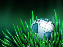 World in the grass Stock Images