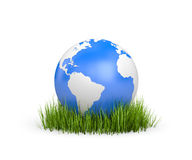 World in grass Royalty Free Stock Photos