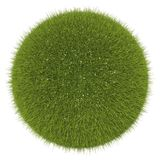 World of grass and flowers: green globe isolated. On white Stock Image