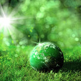 World on green landscape Royalty Free Stock Photo