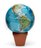The world grows Stock Image