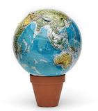 The world grows Royalty Free Stock Photo