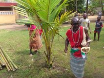 THE WORLD OF GUARDIANS OF TRADITION IN AKAN PEOPLES IN COTE D'IVOIRE Royalty Free Stock Photo