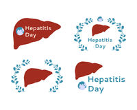 World Hepatitis Day. Silhouette of human liver for World Hepatitis Day Stock Photo