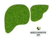 World Hepatitis Day. Symbol of a healthy liver, from a green grass. personifies the health of the body. Ecology in the fight against hepatitis. Isolated on Stock Images